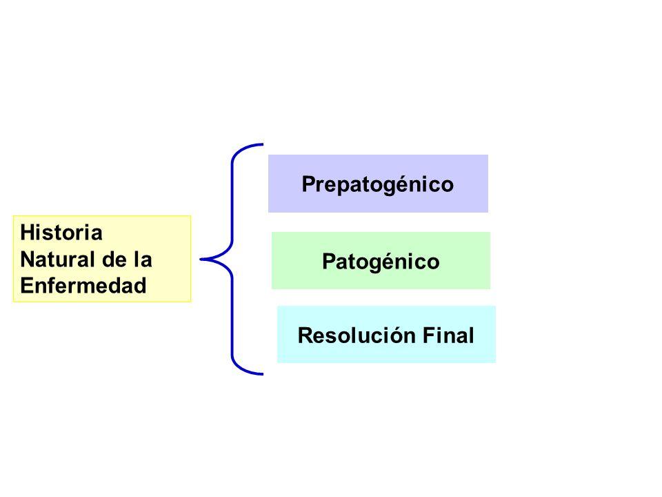 Prepatogénico Historia Natural de la Enfermedad Patogénico Resolución Final