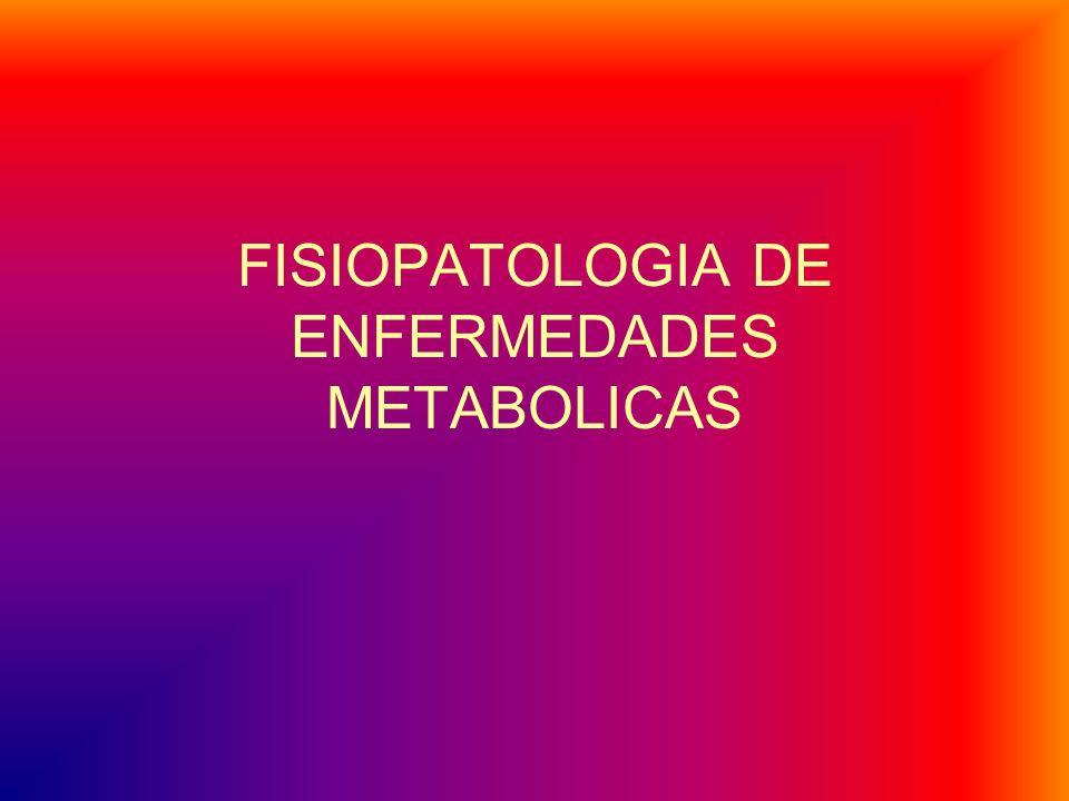 En la obesidad intervienen factores externos e internos al organismo.