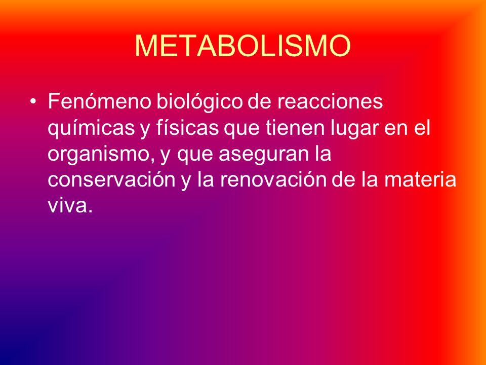 METABOLISMO Fenómeno biológico de reacciones químicas y físicas que tienen lugar en el organismo, y que aseguran la conservación y la renovación de la materia viva.