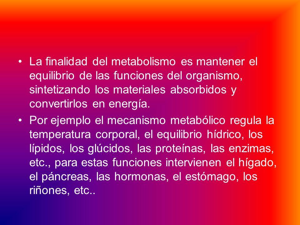 La finalidad del metabolismo es mantener el equilibrio de las funciones del organismo, sintetizando los materiales absorbidos y convertirlos en energía.