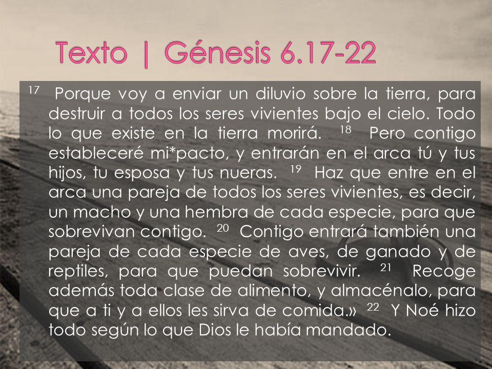 El SEÑOR le dijo a Noé: «Entra en el arca con toda tu familia, porque tú eres el único*hombre justo que he encontrado en esta generación.