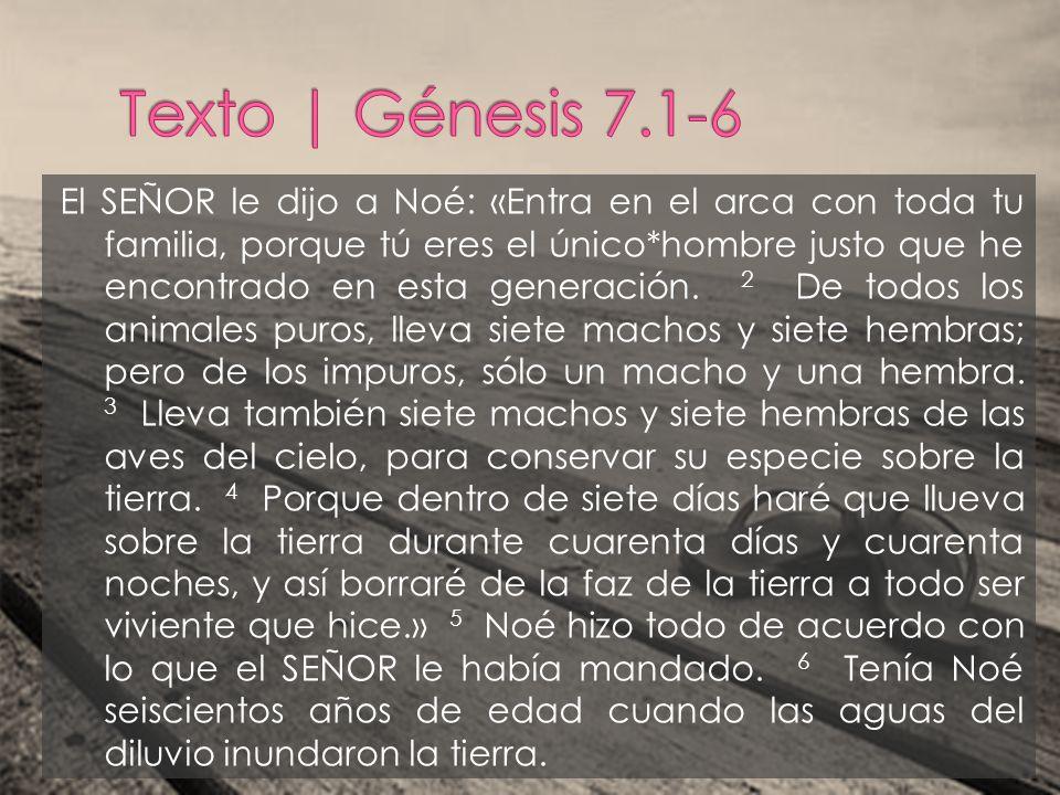 El SEÑOR le dijo a Noé: «Entra en el arca con toda tu familia, porque tú eres el único*hombre justo que he encontrado en esta generación. 2 De todos l