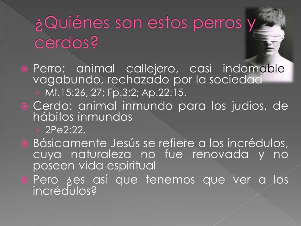 Perro: animal callejero, casi indomable, vagabundo, rechazado por la sociedad Mt.15:26, 27; Fp.3:2; Ap.22:15. Cerdo: animal inmundo para los judíos, d