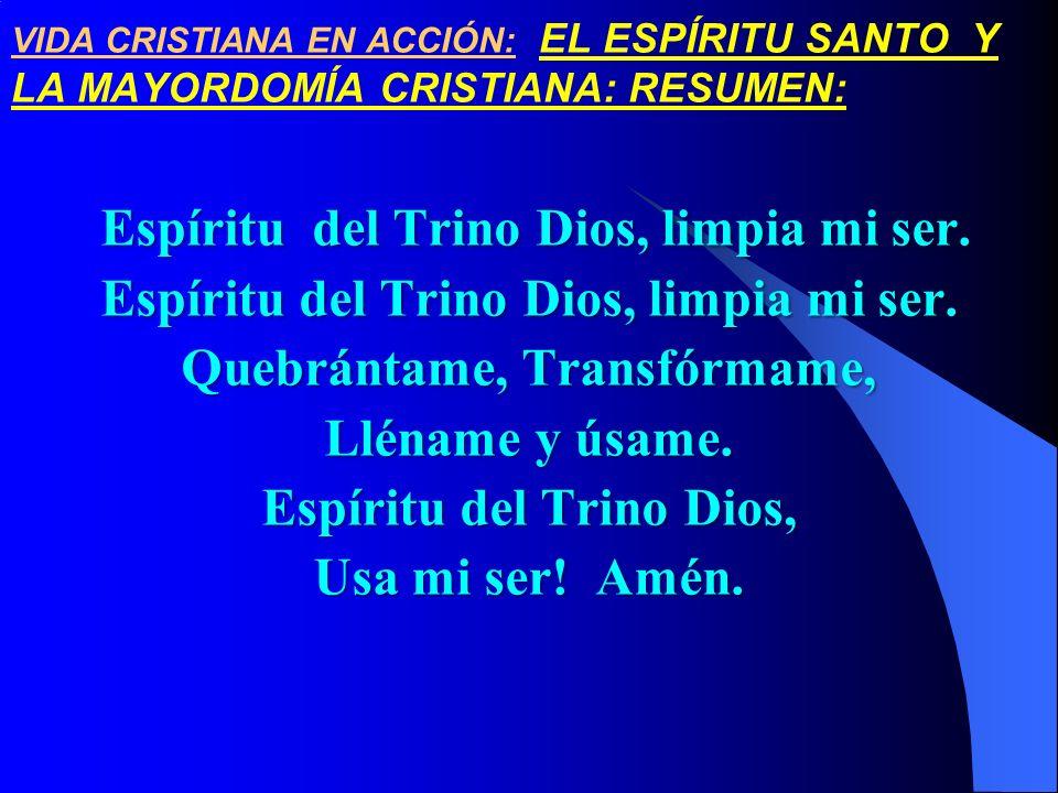 VIDA CRISTIANA EN ACCIÓN: EL ESPÍRITU SANTO Y LA MAYORDOMÍA CRISTIANA: RESUMEN: Espíritu del Trino Dios, limpia mi ser. Espíritu del Trino Dios, limpi