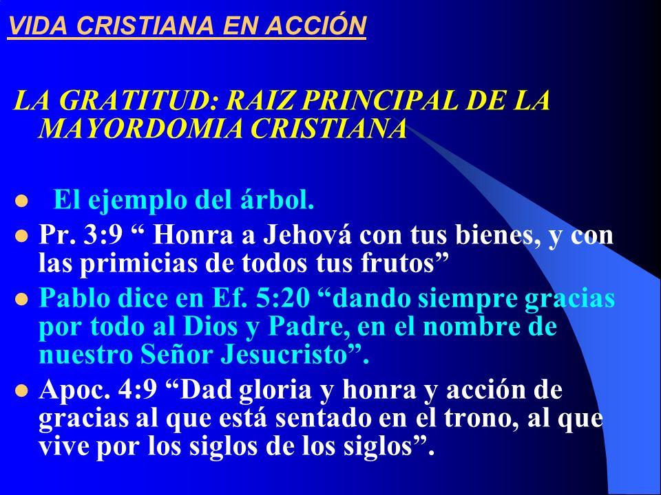 VIDA CRISTIANA EN ACCIÓN LA GRATITUD: RAIZ PRINCIPAL DE LA MAYORDOMIA CRISTIANA El ejemplo del árbol. Pr. 3:9 Honra a Jehová con tus bienes, y con las