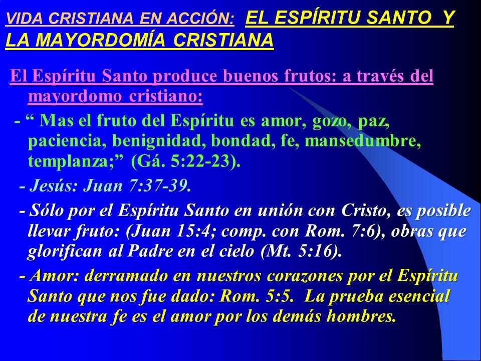 VIDA CRISTIANA EN ACCIÓN: EL ESPÍRITU SANTO Y LA MAYORDOMÍA CRISTIANA El Espíritu Santo produce buenos frutos: a través del mayordomo cristiano: - Mas