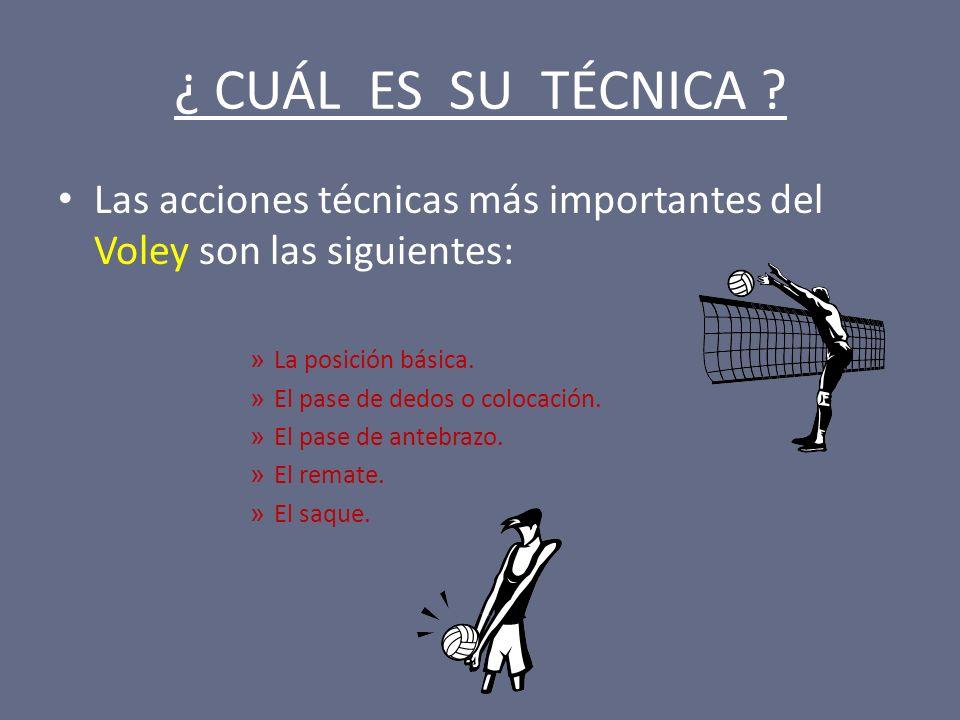 ¿ CUÁL ES SU TÉCNICA ? Las acciones técnicas más importantes del Voley son las siguientes: » La posición básica. » El pase de dedos o colocación. » El