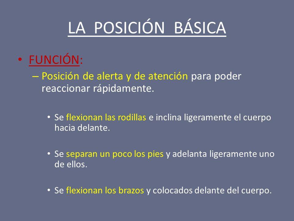 LA POSICIÓN BÁSICA FUNCIÓN: – Posición de alerta y de atención para poder reaccionar rápidamente. Se flexionan las rodillas e inclina ligeramente el c