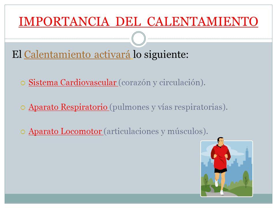 IMPORTANCIA DEL CALENTAMIENTO El Calentamiento activará lo siguiente: Sistema Cardiovascular (corazón y circulación). Aparato Respiratorio (pulmones y