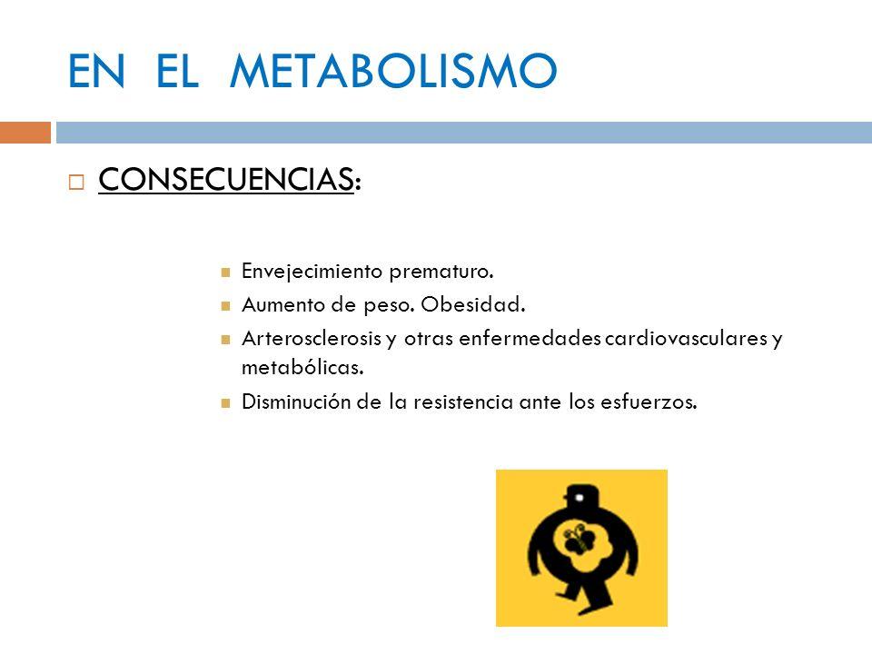 EN EL METABOLISMO CONSECUENCIAS: Envejecimiento prematuro. Aumento de peso. Obesidad. Arterosclerosis y otras enfermedades cardiovasculares y metabóli