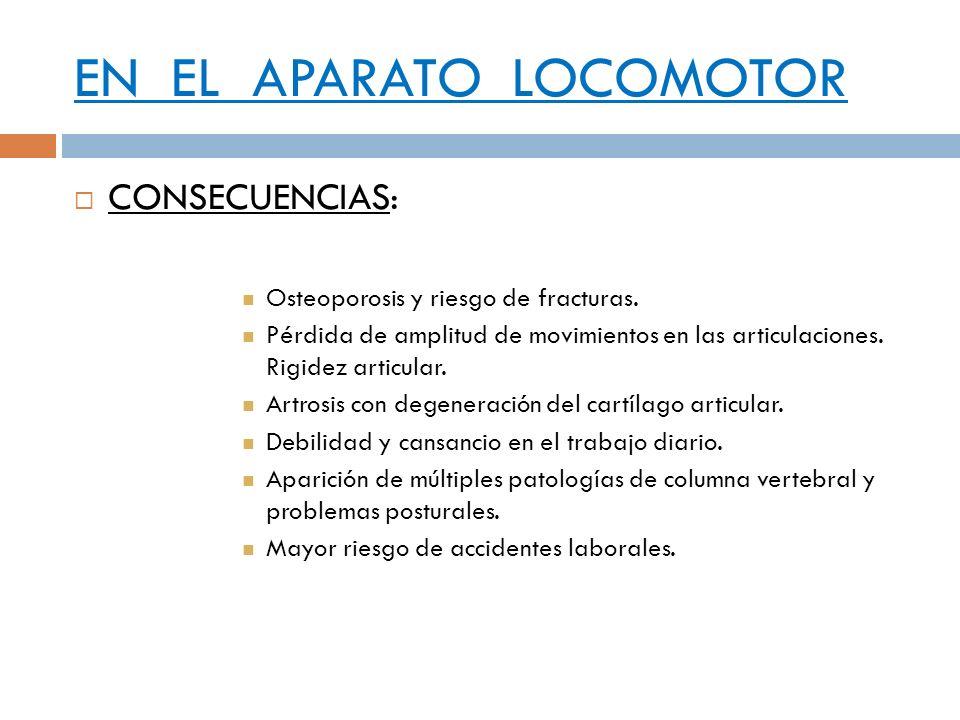 EN EL APARATO LOCOMOTOR CONSECUENCIAS: Osteoporosis y riesgo de fracturas. Pérdida de amplitud de movimientos en las articulaciones. Rigidez articular