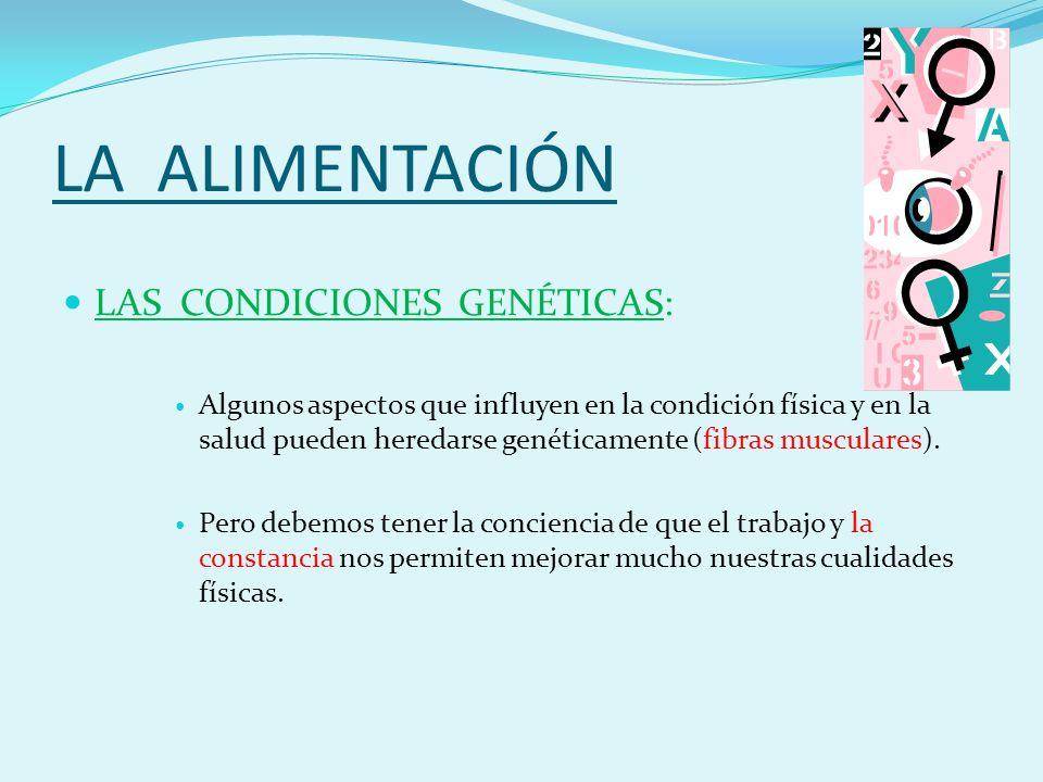 LA ALIMENTACIÓN LAS CONDICIONES GENÉTICAS: Algunos aspectos que influyen en la condición física y en la salud pueden heredarse genéticamente (fibras musculares).