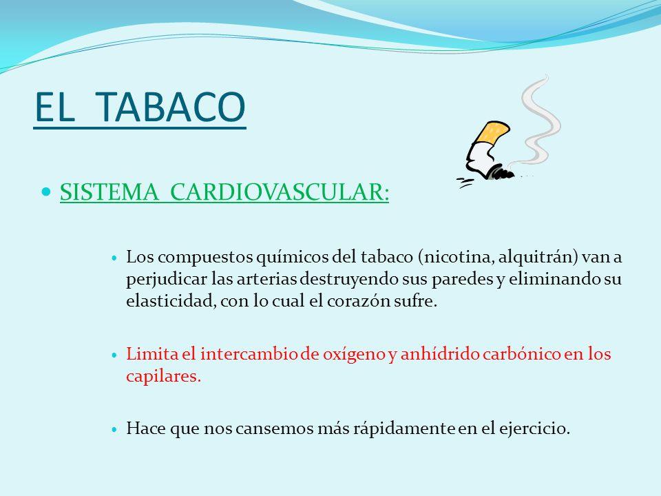 EL TABACO SISTEMA CARDIOVASCULAR: Los compuestos químicos del tabaco (nicotina, alquitrán) van a perjudicar las arterias destruyendo sus paredes y eliminando su elasticidad, con lo cual el corazón sufre.