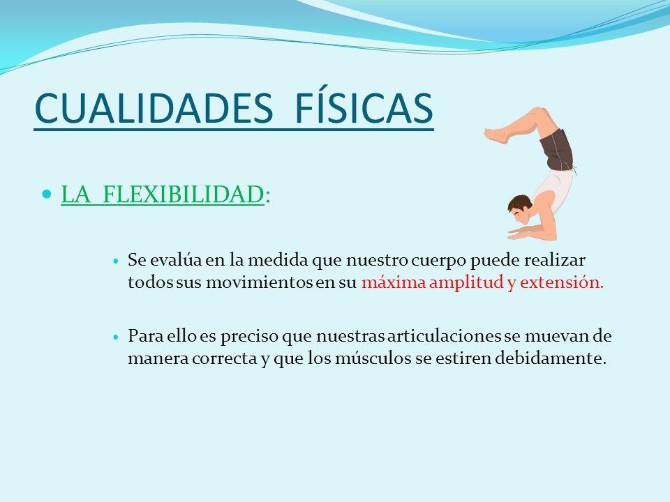 CUALIDADES FÍSICAS LA FLEXIBILIDAD: Se evalúa en la medida que nuestro cuerpo puede realizar todos sus movimientos en su máxima amplitud y extensión.