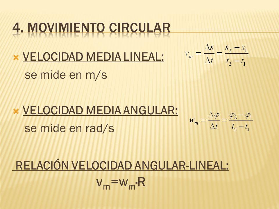 VELOCIDAD MEDIA LINEAL: se mide en m/s VELOCIDAD MEDIA ANGULAR: se mide en rad/s RELACIÓN VELOCIDAD ANGULAR-LINEAL: v m =w m ·R