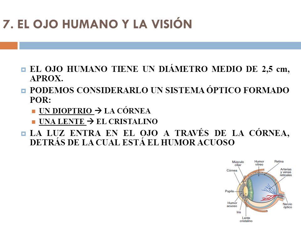 7. EL OJO HUMANO Y LA VISIÓN EL OJO HUMANO TIENE UN DIÁMETRO MEDIO DE 2,5 cm, APROX. PODEMOS CONSIDERARLO UN SISTEMA ÓPTICO FORMADO POR: UN DIOPTRIO L