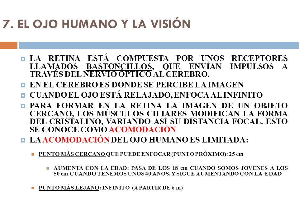 7. EL OJO HUMANO Y LA VISIÓN LA RETINA ESTÁ COMPUESTA POR UNOS RECEPTORES LLAMADOS BASTONCILLOS, QUE ENVÍAN IMPULSOS A TRAVÉS DEL NERVIO ÓPTICO AL CER