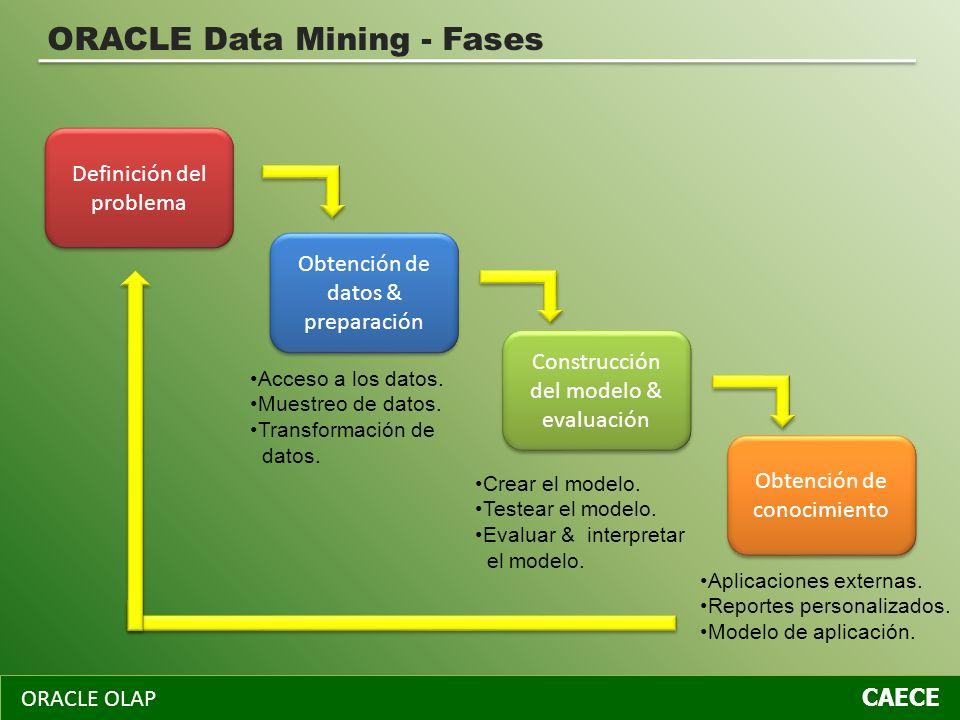 ORACLE OLAP CAECE ORACLE Data Mining - Fases Obtención de datos & preparación Definición del problema Construcción del modelo & evaluación Obtención d