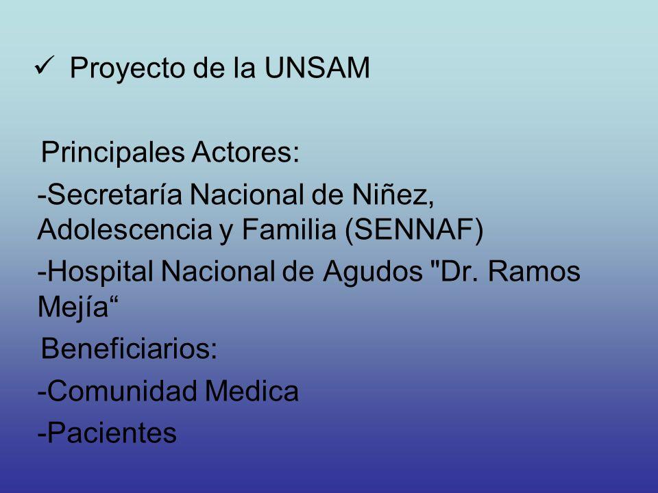 Proyecto de la UNSAM Principales Actores: -Secretaría Nacional de Niñez, Adolescencia y Familia (SENNAF) -Hospital Nacional de Agudos