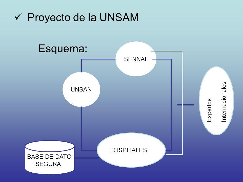 Proyecto de la UNSAM Esquema: UNSAN SENNAF Expertos Internacionales BASE DE DATO SEGURA HOSPITALES
