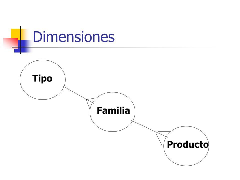 Dimensiones Tipo Familia Producto