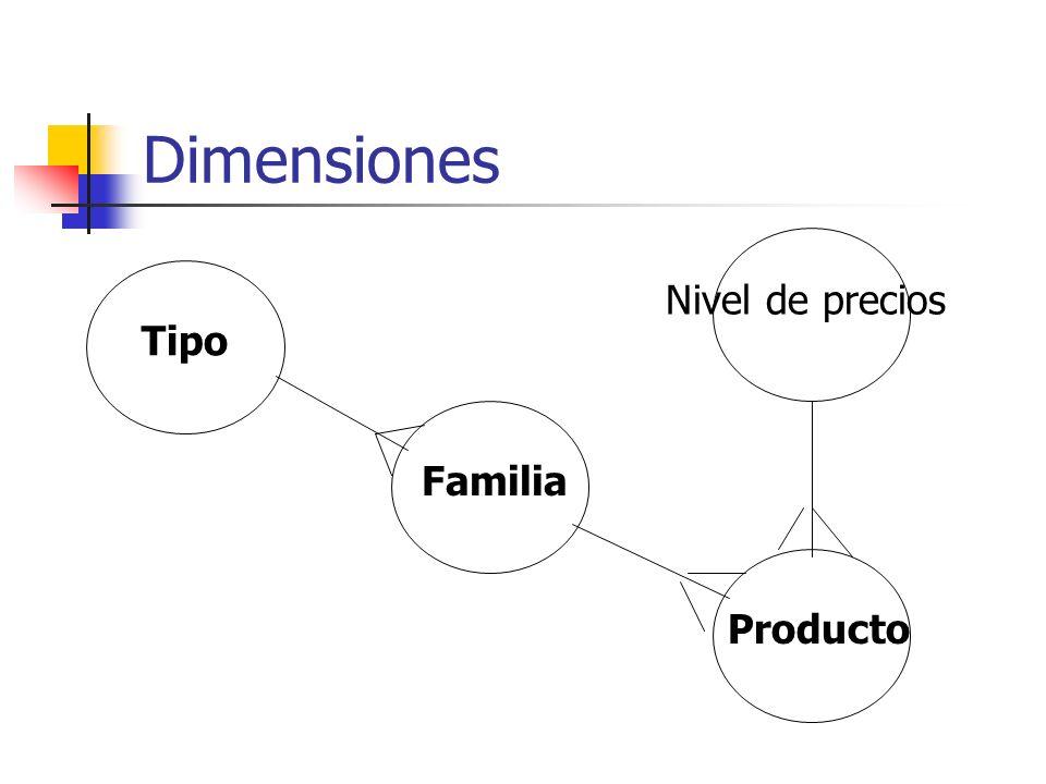 Dimensiones Tipo Familia Producto Nivel de precios
