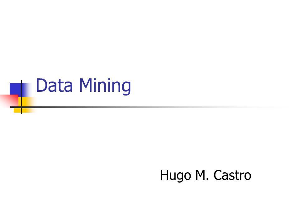 Data Mining Hugo M. Castro