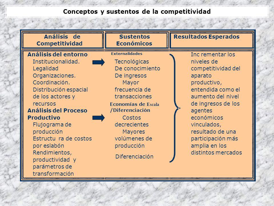 Conceptos y sustentos de la competitividad