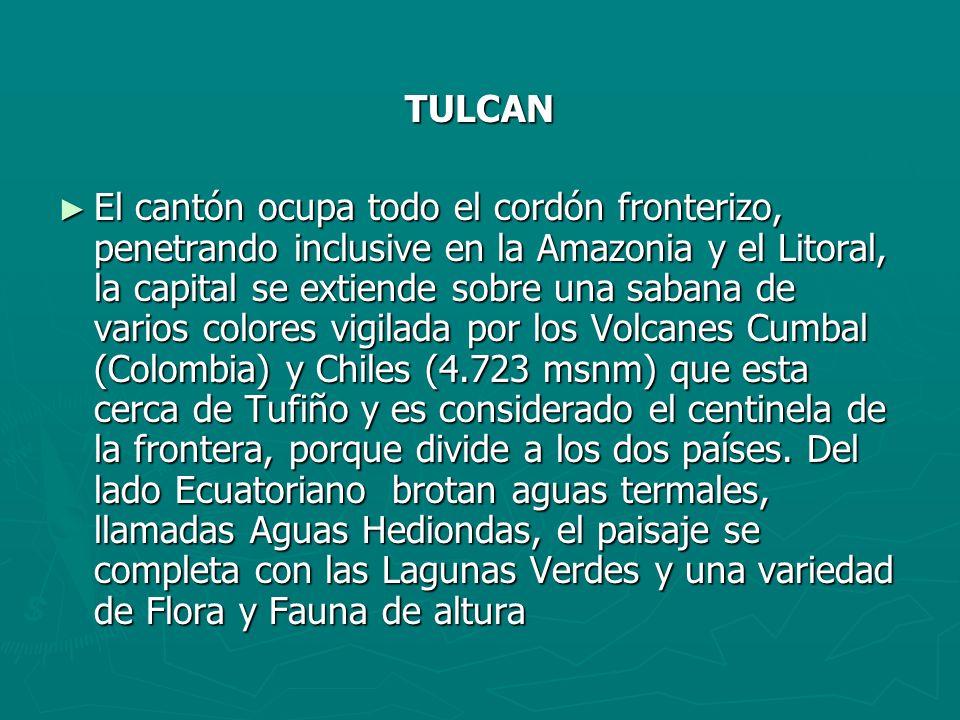 TULCAN El cantón ocupa todo el cordón fronterizo, penetrando inclusive en la Amazonia y el Litoral, la capital se extiende sobre una sabana de varios