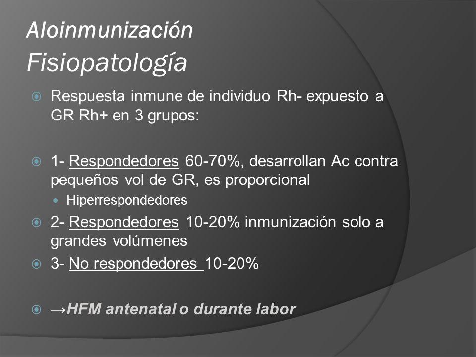 Aloinmunización Fisiopatología Respuesta inmune de individuo Rh- expuesto a GR Rh+ en 3 grupos: 1- Respondedores 60-70%, desarrollan Ac contra pequeño