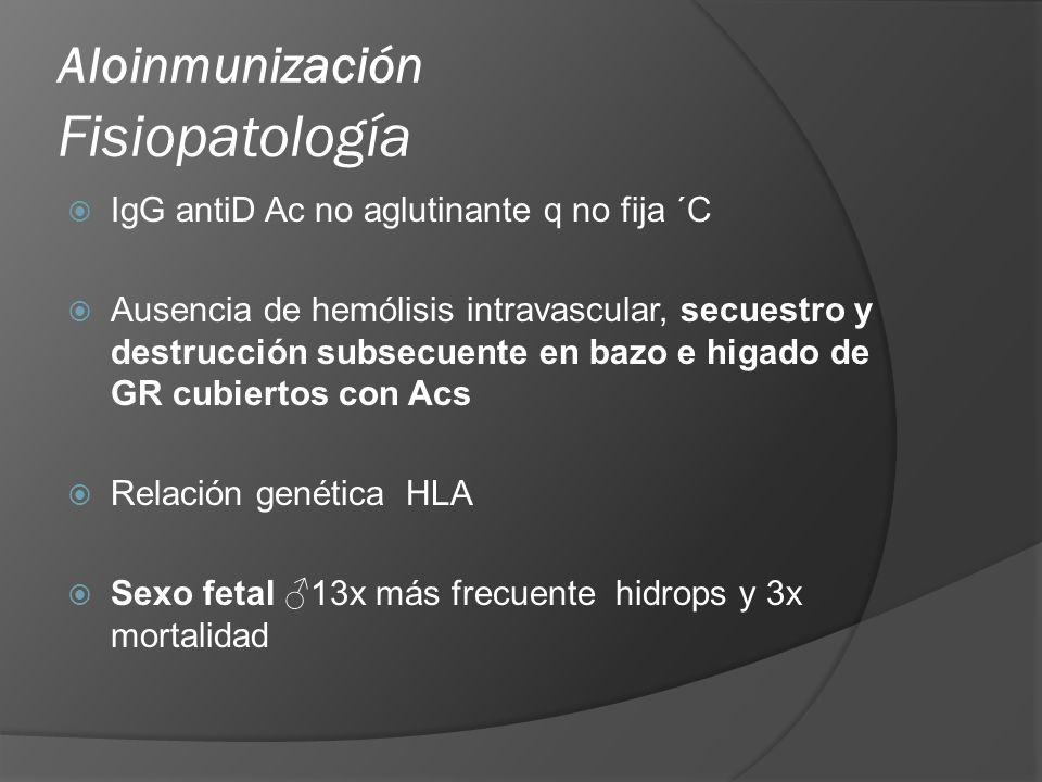 Aloinmunización Fisiopatología Anemia Reticulocitosis con déficit 2g/dL para EG Presencia eritroblastos con déficit 7g/dL GC y niveles de 2-3DPG Hipoxia tisular Hidrops fetal Hallazgo tardío eritropoyesis con depleción de producción albúmina, P π permeabilidad capilar, Fe, PVC,