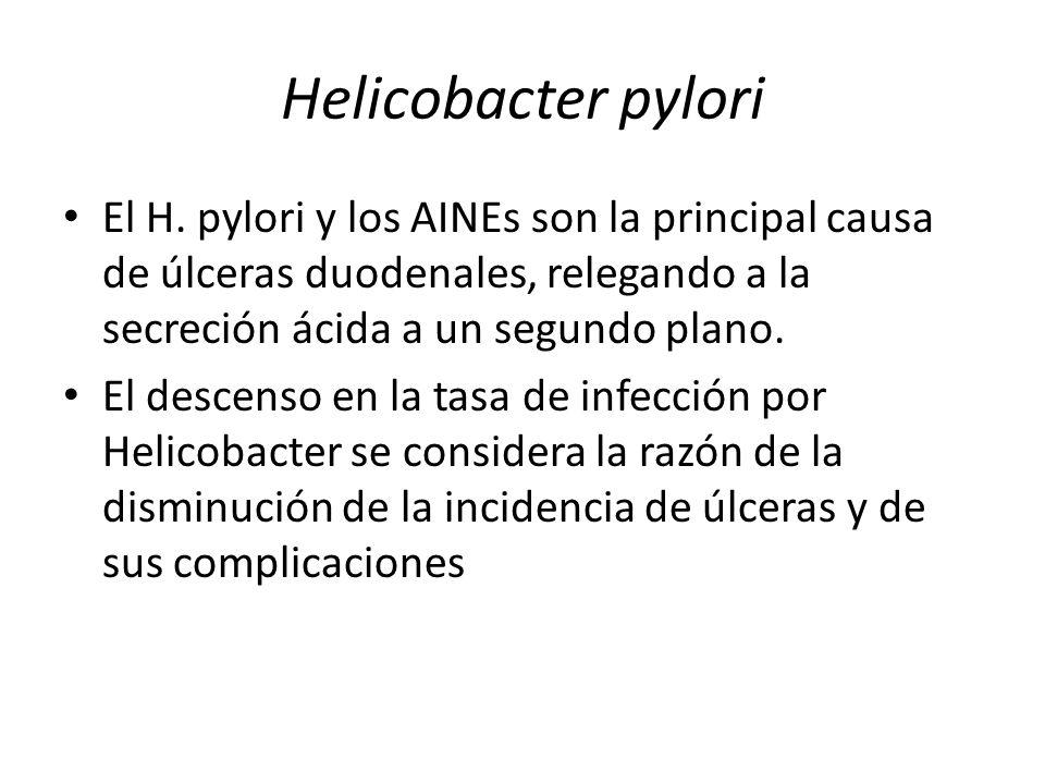 Helicobacter pylori El H. pylori y los AINEs son la principal causa de úlceras duodenales, relegando a la secreción ácida a un segundo plano. El desce