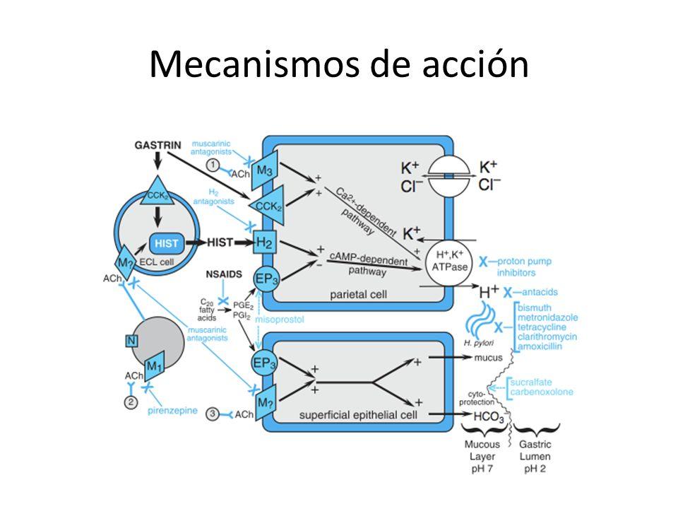 Inhibidores de bomba de protones Son los antiácidos más potentes.
