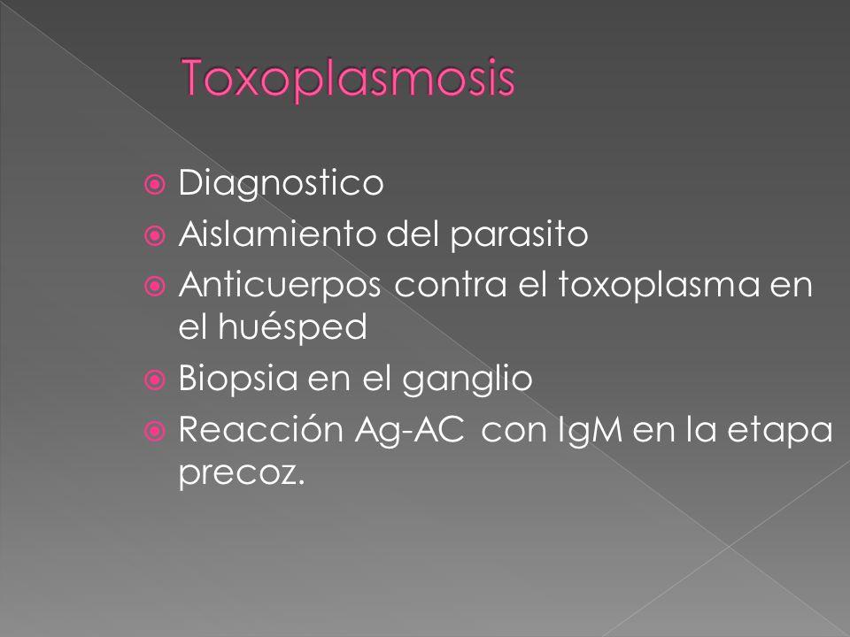 Diagnostico Aislamiento del parasito Anticuerpos contra el toxoplasma en el huésped Biopsia en el ganglio Reacción Ag-AC con IgM en la etapa precoz.