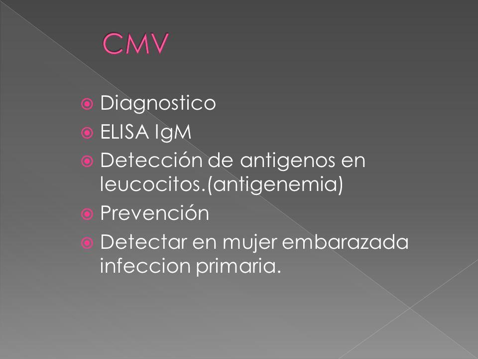 Diagnostico ELISA IgM Detección de antigenos en leucocitos.(antigenemia) Prevención Detectar en mujer embarazada infeccion primaria.