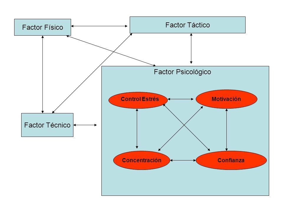 Factor Físico Factor Táctico Factor Técnico Motivación ConcentraciónConfianza Factor Psicológico Control Estrés