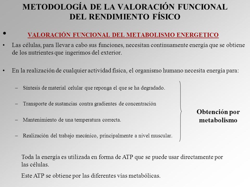 METODOLOGÍA DE LA VALORACIÓN FUNCIONAL DEL RENDIMIENTO FÍSICO VALORACIÓN FUNCIONAL DEL METABOLISMO ENERGETICO Las células, para llevar a cabo sus func