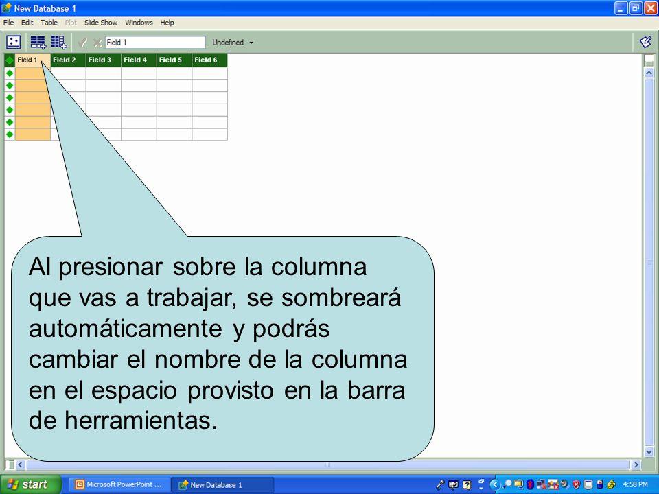 Al presionar sobre la columna que vas a trabajar, se sombreará automáticamente y podrás cambiar el nombre de la columna en el espacio provisto en la barra de herramientas.