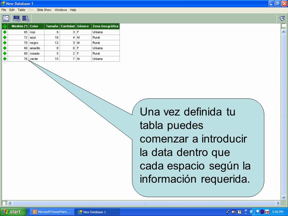 Una vez definida tu tabla puedes comenzar a introducir la data dentro que cada espacio según la información requerida.