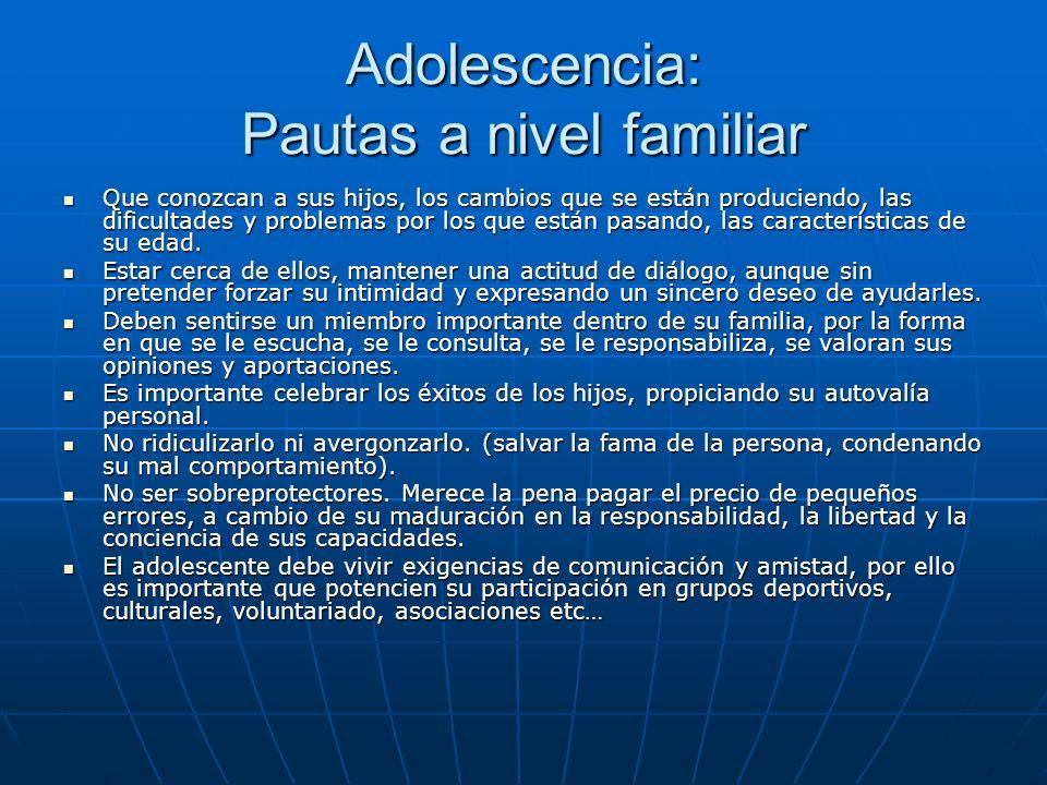 Adolescencia: Pautas a nivel familiar Que conozcan a sus hijos, los cambios que se están produciendo, las dificultades y problemas por los que están pasando, las características de su edad.