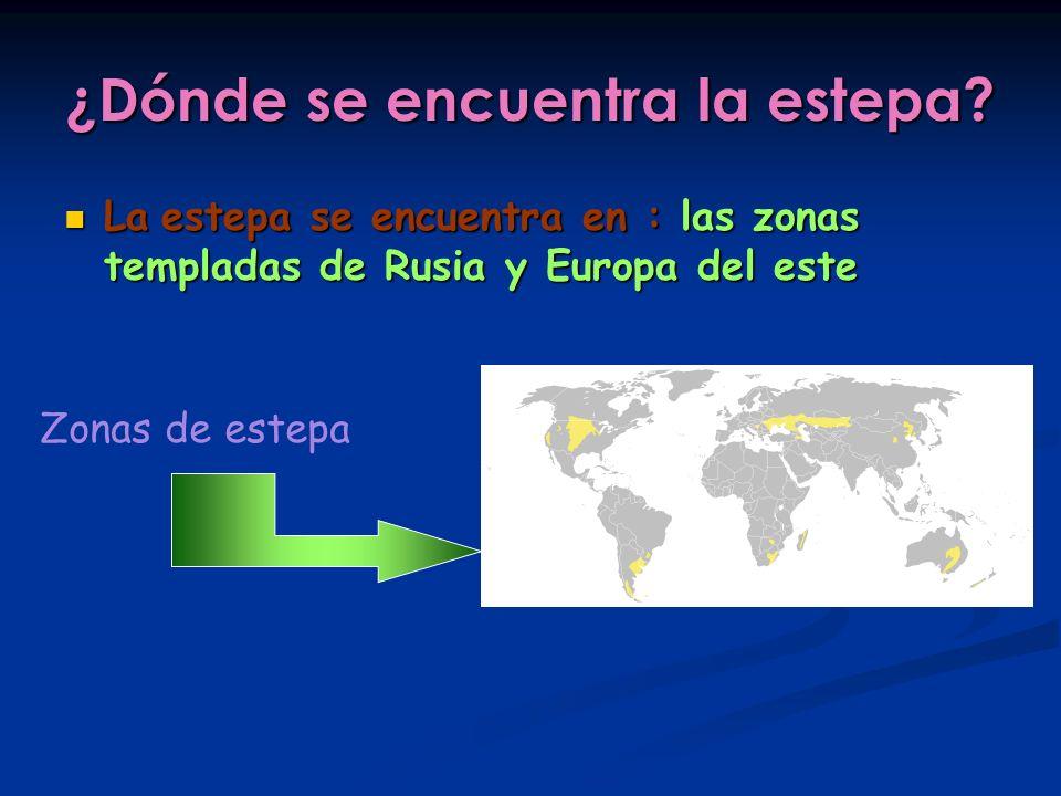 ¿Dónde se encuentra la estepa? La estepa se encuentra en : las zonas templadas de Rusia y Europa del este La estepa se encuentra en : las zonas templa