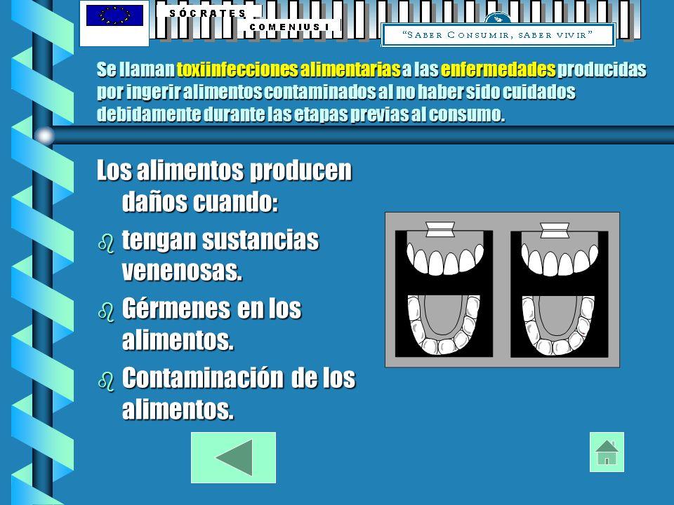 PROBLEMAS SANITARIOS DE LOS ALIMENTOS TOXIINFECCIONES PREVENCIÓN ENFERMEDADES CONTAMINACIÓN