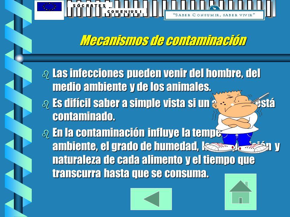 Enfermedades más comunes producidas por alimentos.: b Botulismo. b Salmonelosis. b Empachos. b Vómitos. b Diarreas. b Fiebres. b Dolores abdominales.