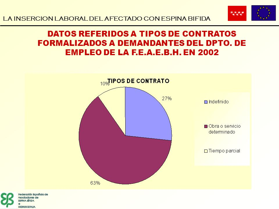 LA INSERCION LABORAL DEL AFECTADO CON ESPINA BIFIDA DATOS REFERIDOS A TIPOS DE CONTRATOS FORMALIZADOS A DEMANDANTES DEL DPTO. DE EMPLEO DE LA F.E.A.E.