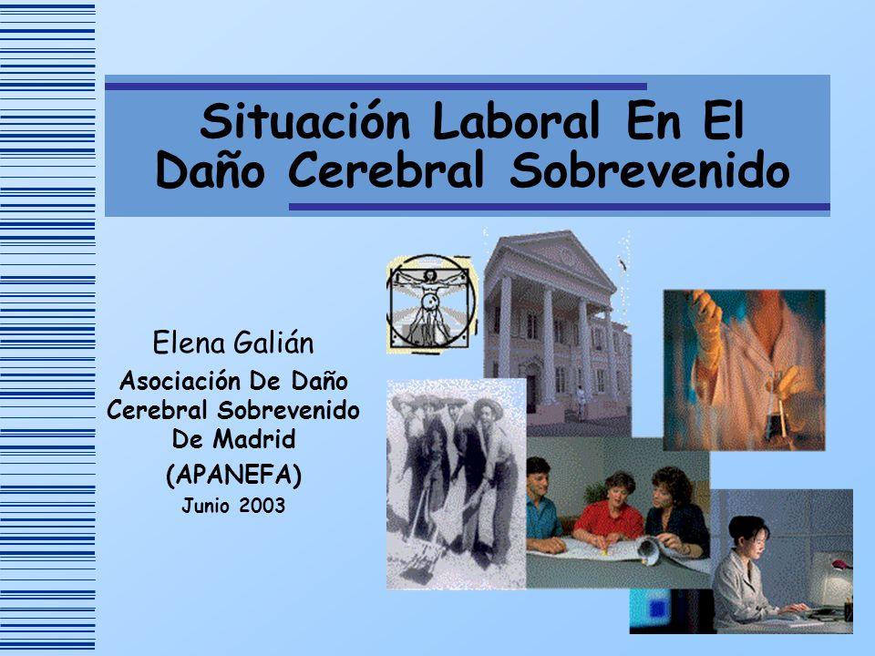 Situación Laboral En El Daño Cerebral Sobrevenido Elena Galián Asociación De Daño Cerebral Sobrevenido De Madrid (APANEFA) Junio 2003