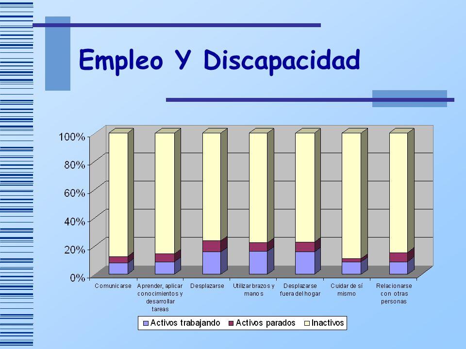 Empleo Y Discapacidad