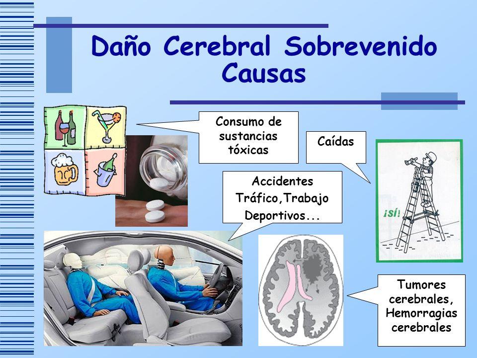 Daño Cerebral Sobrevenido Causas Accidentes Tráfico,Trabajo Deportivos... Consumo de sustancias tóxicas Caídas Tumores cerebrales, Hemorragias cerebra