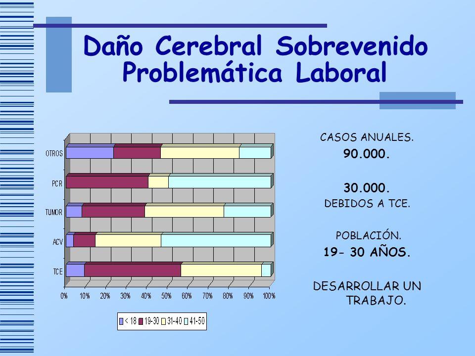 Daño Cerebral Sobrevenido Problemática Laboral CASOS ANUALES. 90.000. 30.000. DEBIDOS A TCE. POBLACIÓN. 19- 30 AÑOS. DESARROLLAR UN TRABAJO.