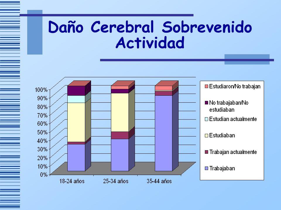 Daño Cerebral Sobrevenido Actividad