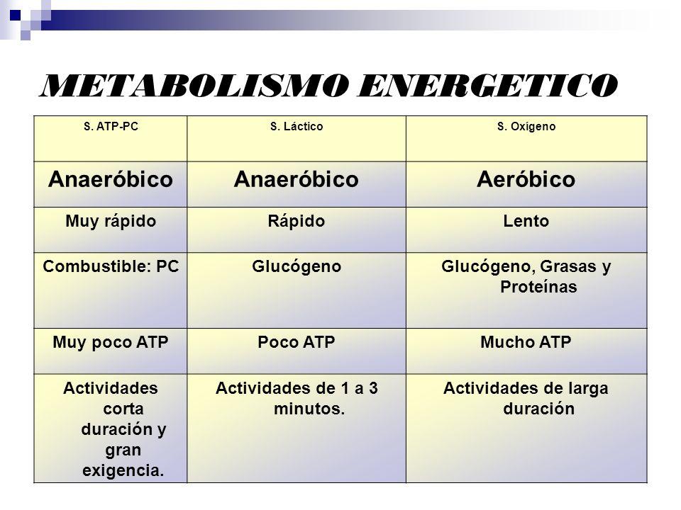 METABOLISMO ENERGETICO S. ATP-PCS. LácticoS. Oxígeno Anaeróbico Aeróbico Muy rápidoRápidoLento Combustible: PCGlucógenoGlucógeno, Grasas y Proteínas M
